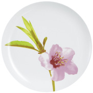 water-color-dinner-plate-25cm-luminarc
